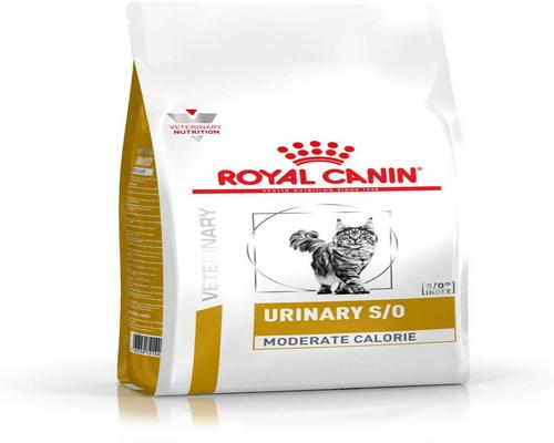 une Pack Nourriture Royal Canin