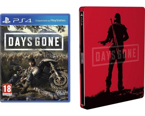 Un Jeu PS4 Days Gone