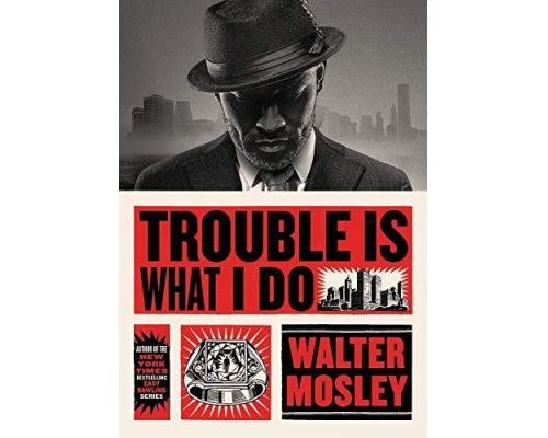 <notranslate>A Trouble Is What I Do Book</notranslate>